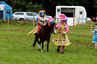 Pony fancy dress